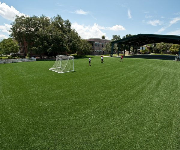 academy_prep_turf_field-full-DeShayes-Dream-Courts